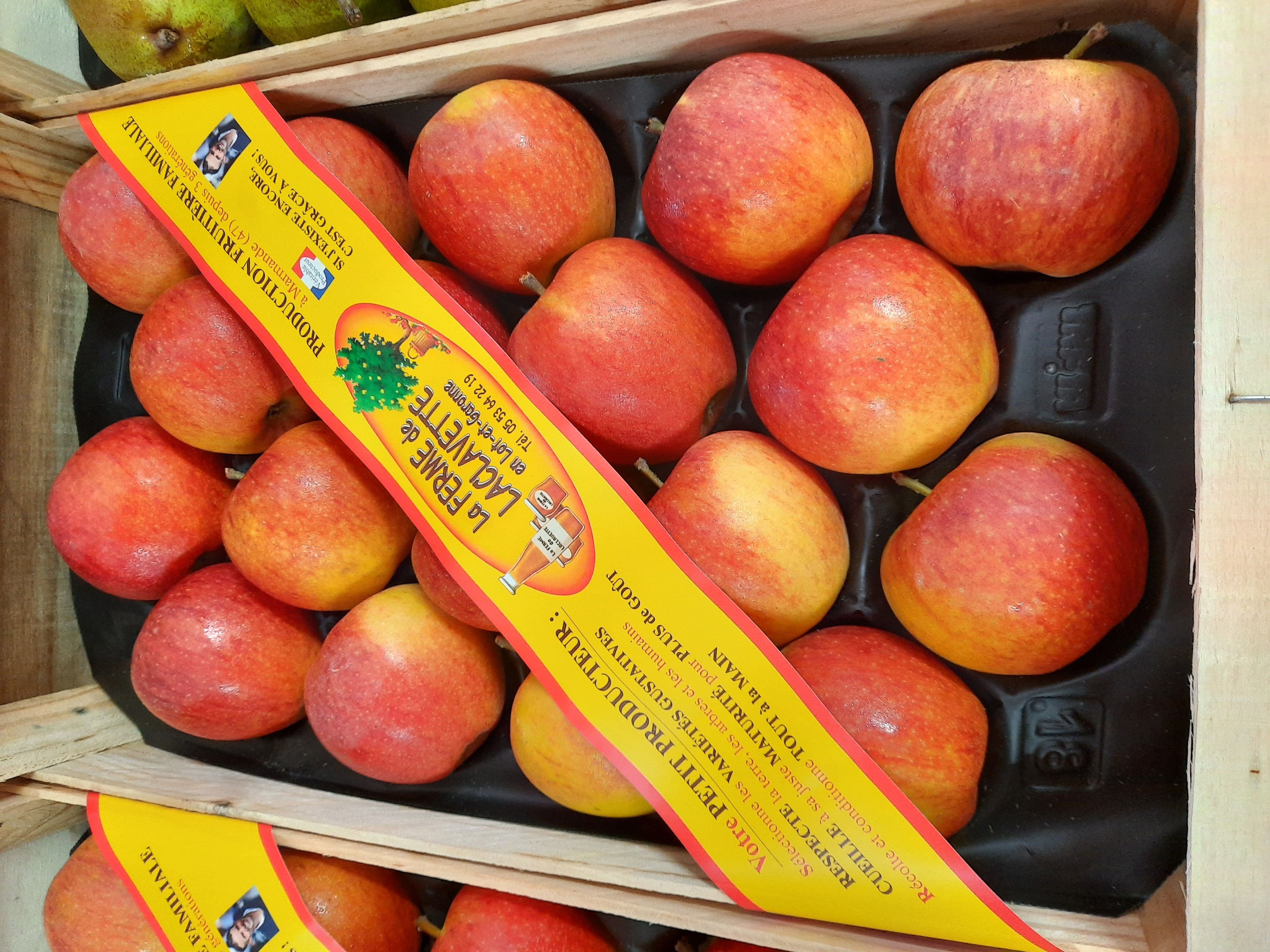 Pommes - plateau - fruits - bande - lafermedelaclavette