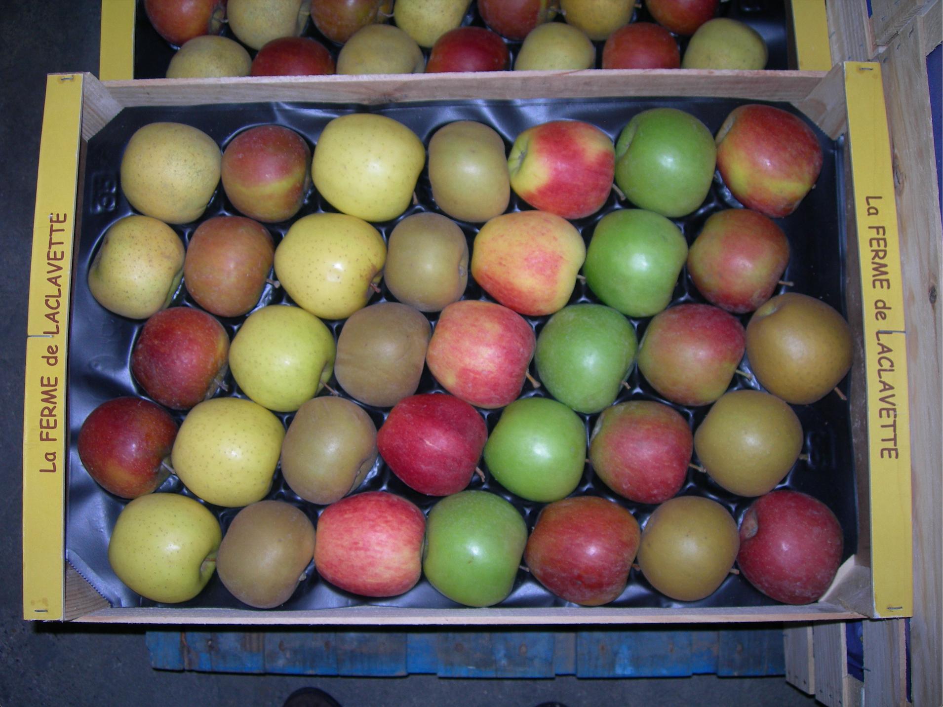 Pommes - plateau - fruits - lafermedelaclavette